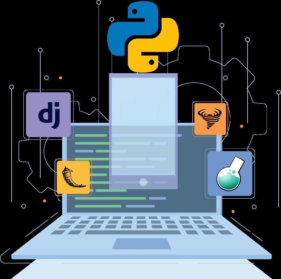 Python Hybrid Programming Services Soft Suave