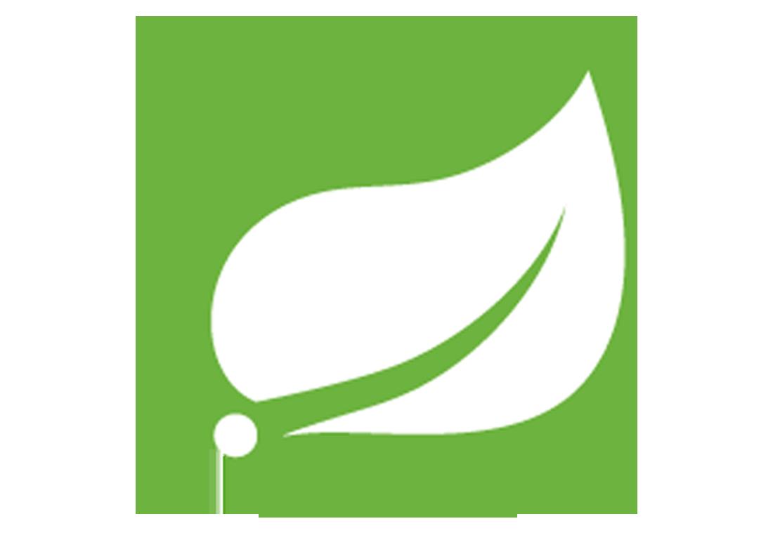 Spring framework development company soft suave